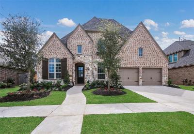 Fort Bend County Single Family Home For Sale: 30715 Zerene Trace