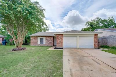 Houston Single Family Home For Sale: 7510 Silver Cloud Lane