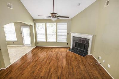 Sugar Land Single Family Home For Sale: 1123 Jasons Bend Drive