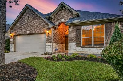 The Woodlands Single Family Home For Sale: 7 Painted Post Place