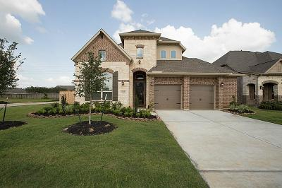 Tomball Single Family Home For Sale: 25218 Angelwood Springs