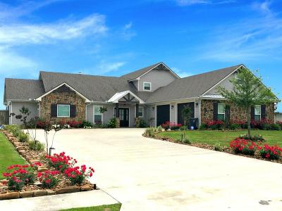 Beaumont Single Family Home For Sale: 14955 Michelle Lane