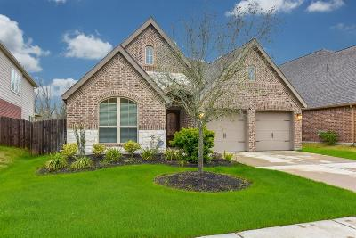 Pearland Single Family Home For Sale: 3416 Sterling Garden Lane
