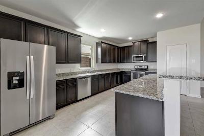 Hockley Single Family Home For Sale: 21202 Indigo Robin Drive