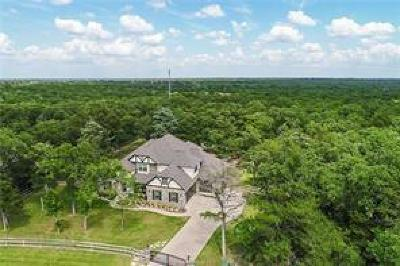 College Station Single Family Home For Sale: 5275 Canvasback Cove