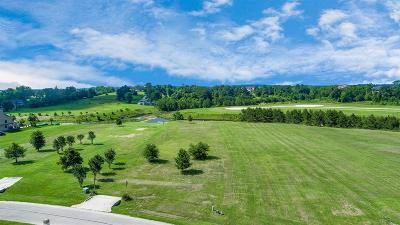Residential Lots & Land For Sale: 11693 Grandview Drive