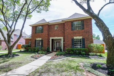Sugar Land Single Family Home For Sale: 3723 Meadow Spring Drive