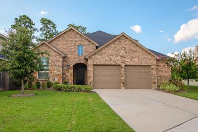Conroe Single Family Home For Sale: 8434 Horsepen Bend Drive