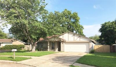 Single Family Home For Sale: 4210 Apache Court