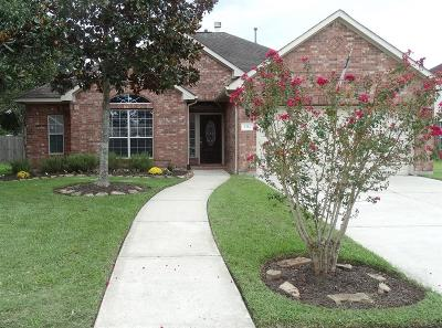 Pearland Single Family Home For Sale: 2314 Raffaello Drive