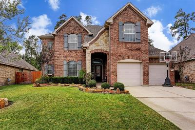 Conroe Single Family Home For Sale: 31927 Wildwood Park Lane