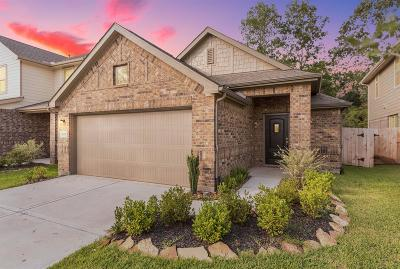 New Caney Single Family Home For Sale: 18889 Genova Bay Court