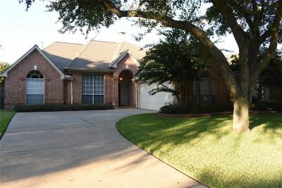 Houston Single Family Home For Sale: 1111 Rosemeadow Drive