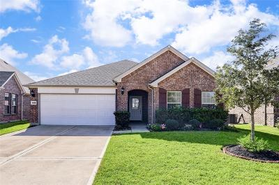 Katy Single Family Home For Sale: 4610 Brant Crossing Drive