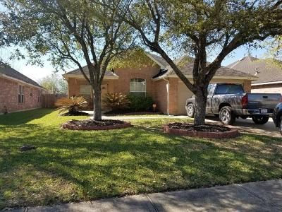 League City Single Family Home For Sale: 6166 Galloway Lane