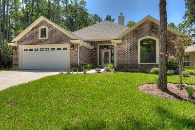 Montgomery Single Family Home For Sale: 13701 Vail Drive