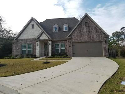 Montgomery Single Family Home For Sale: 113 Golden Eye Court
