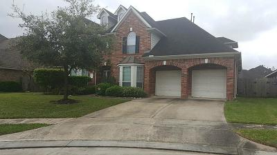 Sugar Land Single Family Home For Sale: 14319 Rockport Court
