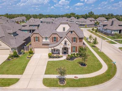 Fulbrook On Fulshear Creek Single Family Home For Sale: 4806 Legend Creek Drive