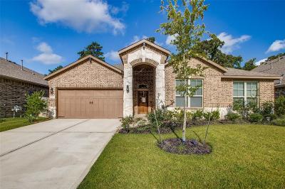 Spring Single Family Home For Sale: 4710 Preserve Park Drive