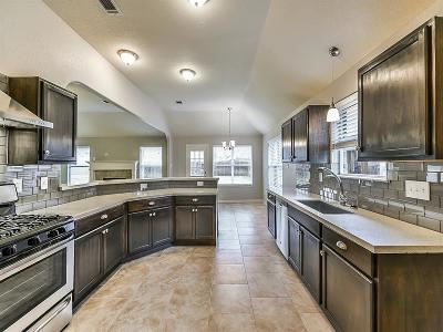 Spring Single Family Home For Sale: 23618 Mesquite Trail Lane