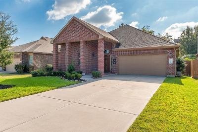 League City Single Family Home For Sale: 2410 Via Montesano