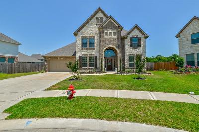 Friendswood Single Family Home For Sale: 1102 Deer Valley Drive