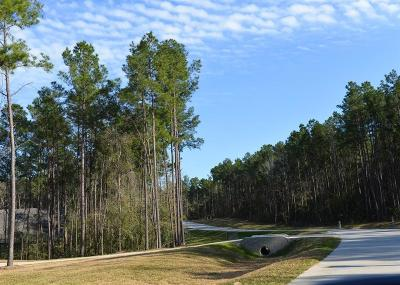 Conroe Residential Lots & Land For Sale: 9554 Longmire Oaks Drive
