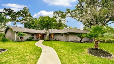 Briargrove Park Single Family Home For Sale: 10002 Green Tree Road