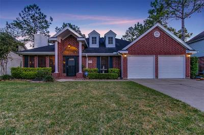 Pearland Single Family Home For Sale: 2313 Evergreen Drive