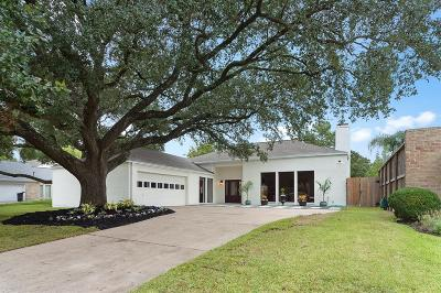 Houston Single Family Home For Sale: 10210 Inwood Drive