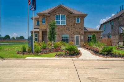 Baytown Single Family Home For Sale: 2207 Rosillo Brook Drive