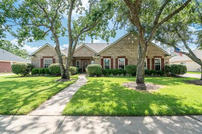 Friendswood Single Family Home For Sale: 802 Piney Ridge Drive