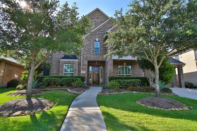 Katy Single Family Home For Sale: 10119 Stafford Hill Cove
