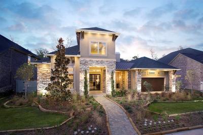 Conroe Single Family Home For Sale: 10486 Lake Palmetto Drive