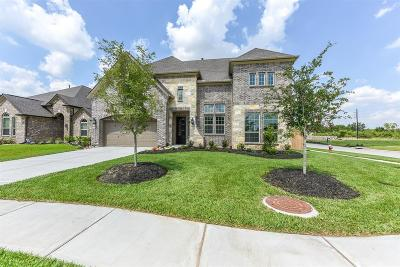 Manvel Single Family Home For Sale: 4200 Scarteen Court