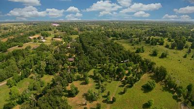 Fort Bend County Farm & Ranch For Sale: 37510 Fm 1093
