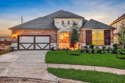 Tomball Single Family Home For Sale: 9603 Battleford Drive