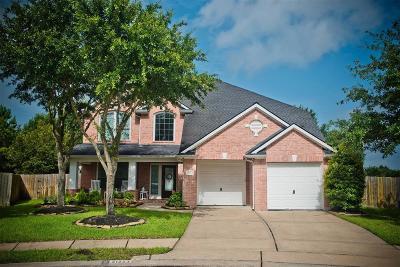 Grand Lakes Single Family Home For Sale: 21223 Dover Park Lane