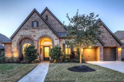 Pearland Single Family Home For Sale: 3204 Tamara Creek Lane