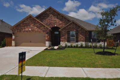 League City, League Single Family Home For Sale: 1624 Laslina