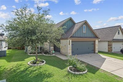 Madison County, Brazos County Single Family Home For Sale: 2008 Positano Loop