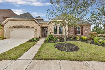 Katy Single Family Home For Sale: 1719 Creekside Drive