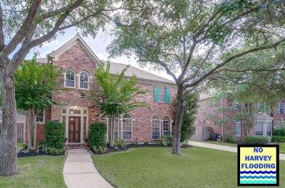 Katy Single Family Home For Sale: 1522 Morning Park Drive