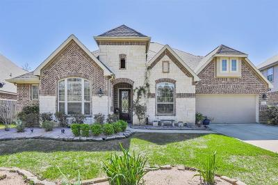 New Caney Single Family Home For Sale: 18834 Newberry Forest Drive