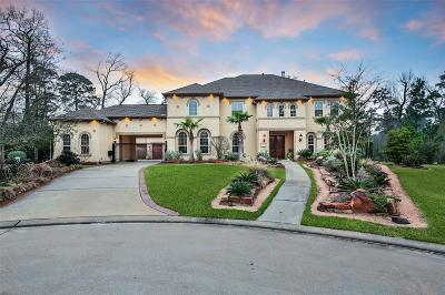 The Woodlands Single Family Home For Sale: 51 Ironton Place