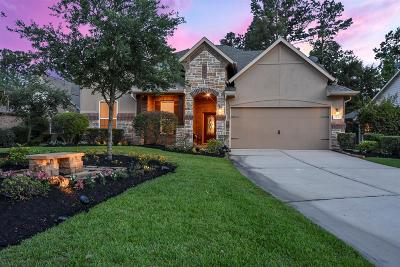 Spring Single Family Home For Sale: 31 Prairie Falcon Court