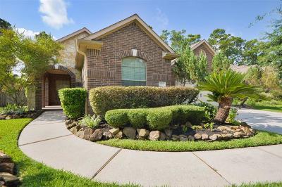 Kingwood Single Family Home For Sale: 22121 Iron Knoll Drive