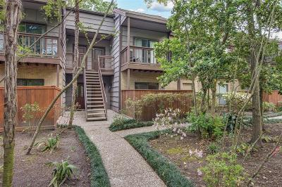 Harris County Condo/Townhouse For Sale: 11711 Memorial Drive #294