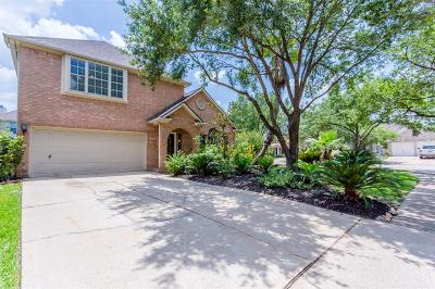 Sugar Land Single Family Home For Sale: 4402 Casey Circle